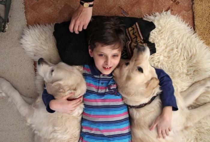 Мальчик лежит обняв двух собак