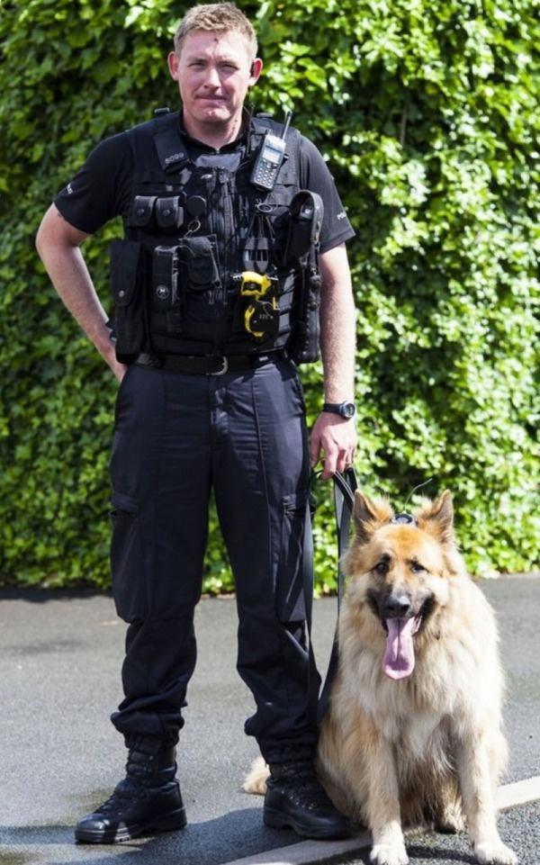 Собака с камерой и полицейский