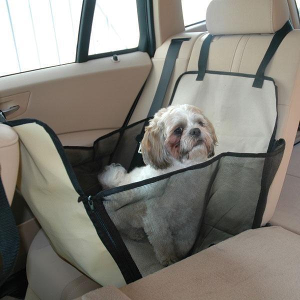 сабака в машине