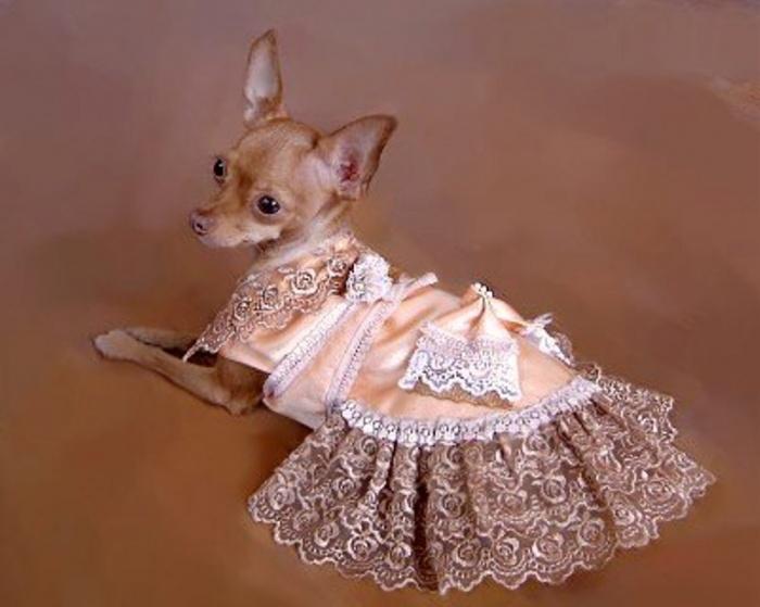 платье почти от кутюр