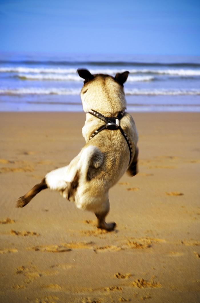 ура, я на море!!!