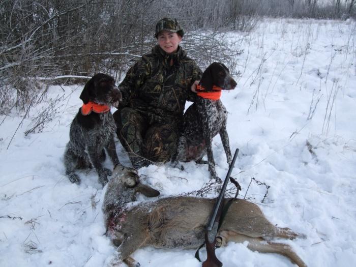 легавые на охоте