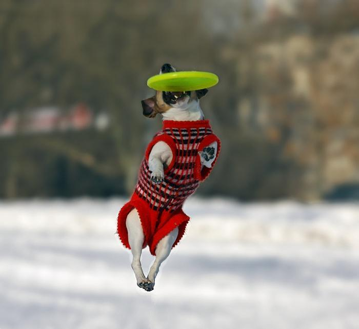 зимние тренировки