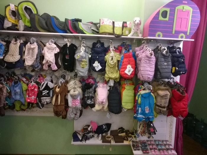 коллекции одежды