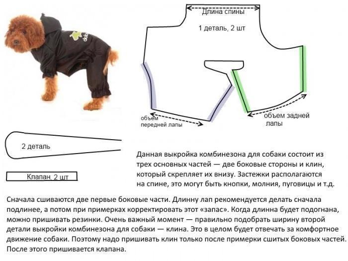 Одежда Для Маленьких Собак Выкройки