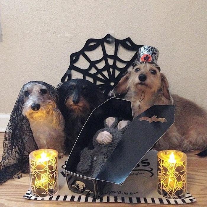 мрачная троица