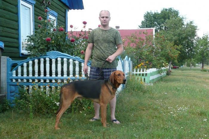 Беларуски ганчак