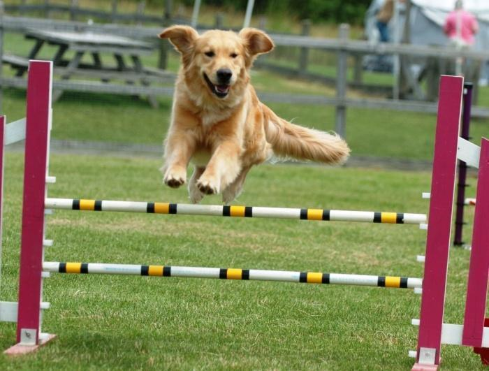 прыжок на соревновании