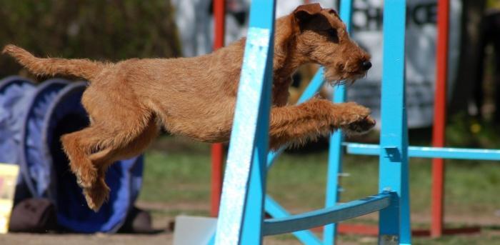 отработка прыжков
