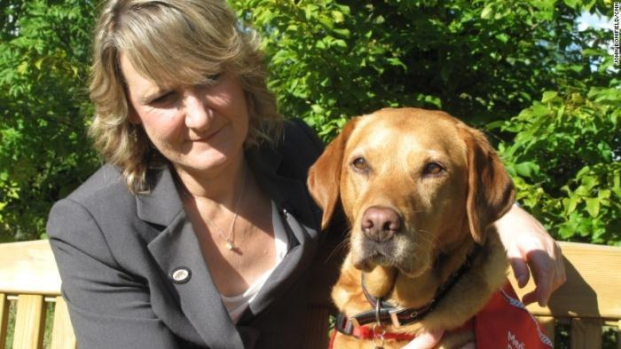 Знакомьтесь с собаками, которые могут вынюхивать рак лучше, чем некоторые лабораторные тесты