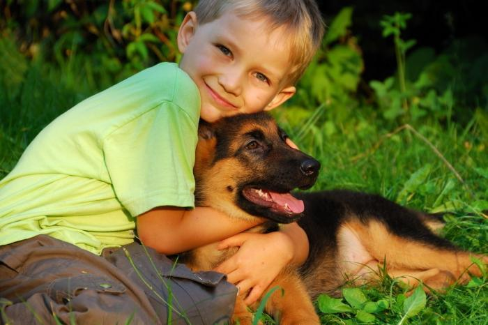 Общение с собакой без аллергии