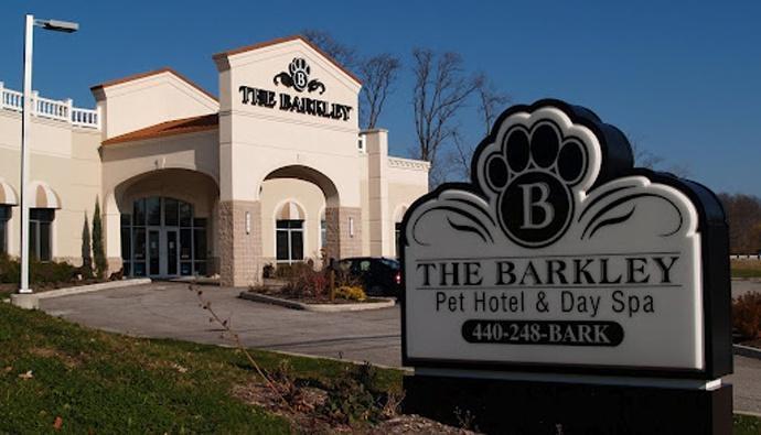 Спа-отель для собак. США.