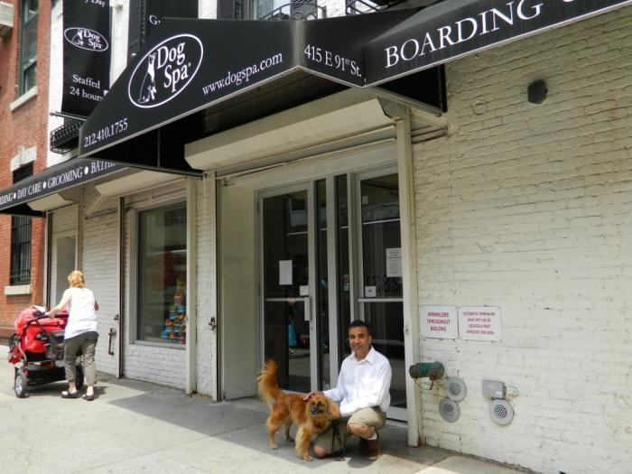 New York Dog Spa  &  Hotel