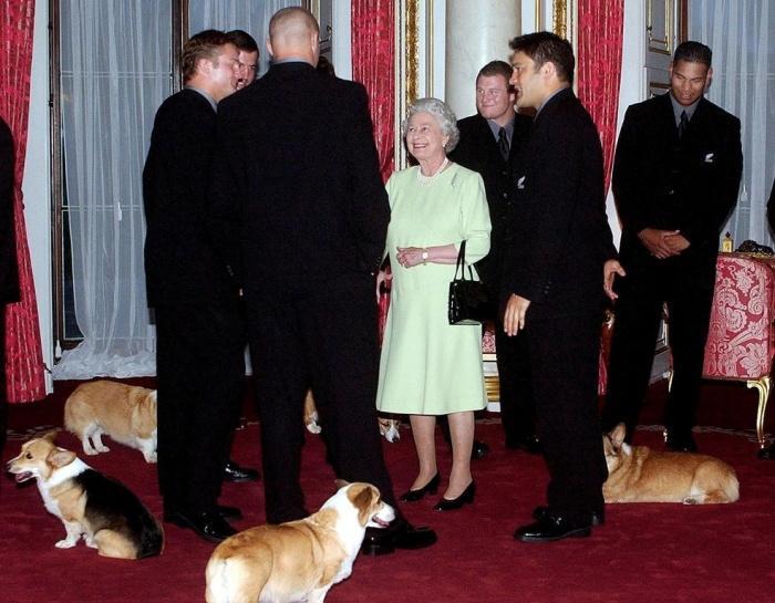 Встреча с королевской семьей