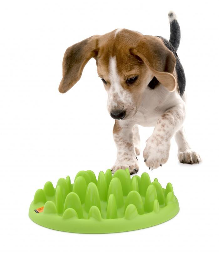 Игрушка-миска для еды.