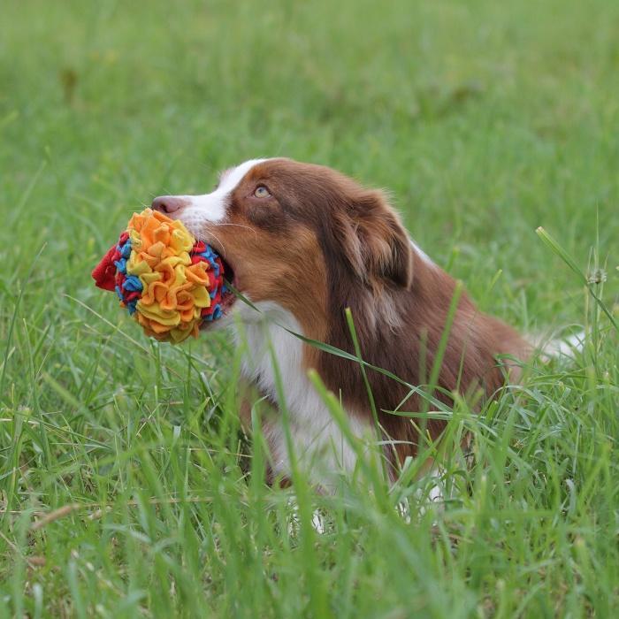 Игрушка для собак из флиса Шар