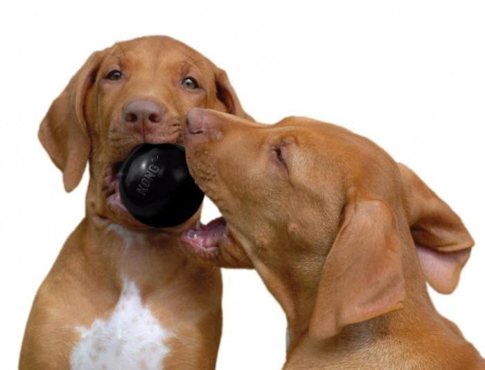 Игрушка для собак Конг