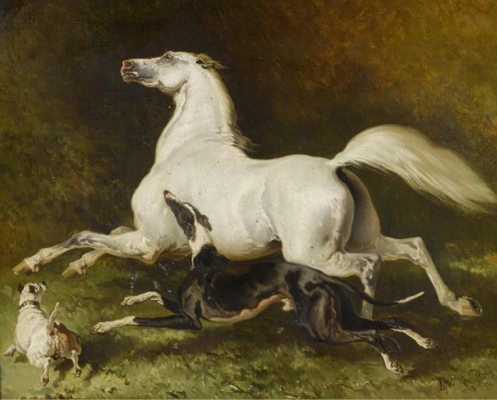 Наперегонки с конем!