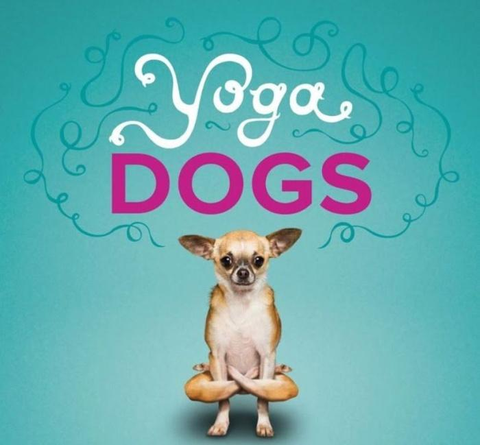 Собаки-йоги