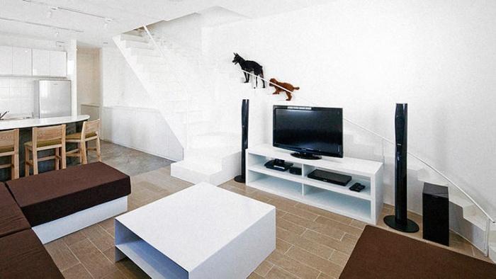 Лестница для собак