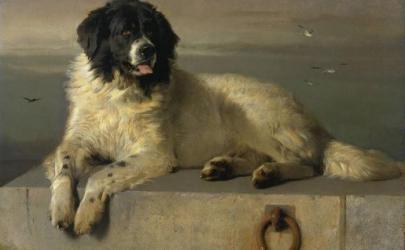 Собаки на картинах Эдвина Генри Ландсира