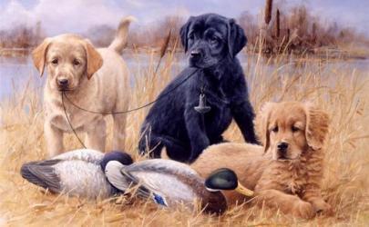 Охотничьи собаки в изобразительном искусстве