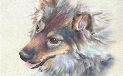 Собаки в творчестве Гульшат Гильмановой
