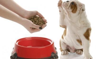Корма для домашних животных  от Beneful