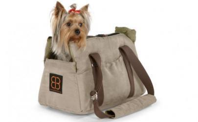 Выбор сумки-переноски для собаки