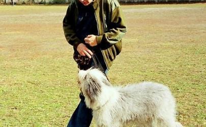 Как обучить собаку команде «рядом»