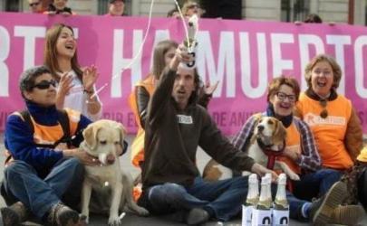 В Мадриде никогда не будут убивать собак!