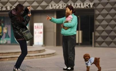 Собаки – новая страсть китайцев