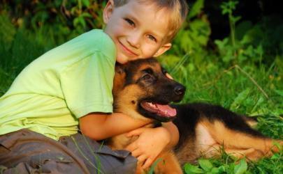 Бывает ли аллергия на собак?