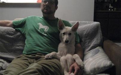 15 собак, которые уверены в том, что они люди по данным портала АдМи.ру